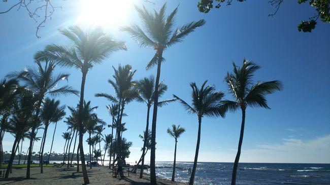 会社の先輩・後輩の仲良し3人組でハワイにいってきました。<br />後輩発案で決まった旅行なのですが、とっても楽しかったです!<br />ハワイは日本人がいっぱいいるイメージだったのであまり興味なかったのですが、女子旅にはいい場所ですね!
