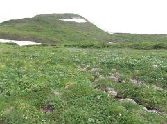 岩手の山旅2 花の山・焼石岳