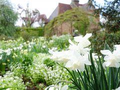 ⑤エジンバラとロンドン花も団子も一人旅 シシングハースト春の花と夢のブルーヘブン