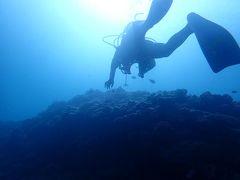 梅雨明けの沖縄へ(11)安定の真栄田岬ダイビングは南風にはめちゃ強い!&夜はアリビラの和牛カレーのルームサービス