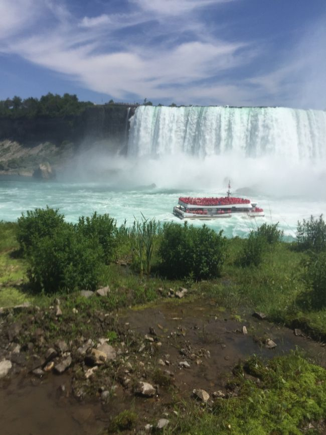わーまさかモントリオールから ナイアガラの滝まで8時間以上バスに乗ってるなんてー!と思ったら渋滞に巻き込まれて11時間乗ってましたーー!この旅で一番ケチってしまってこの行程をMegabusにしちゃったもんでーお安くて済んだけどその分時間かかるー。<br /><br />モントリオールに4泊した後、ナイアガラ目の前のホテルに2泊しました。<br />本当は一泊の予定だったけどあまりに移動時間がかかるので2泊に。<br />おかげさんで花火も滝のライトアップも2回見られましたー!<br /><br />ナイアガラはエンターテイメントタウンです。ラスベガスっぽい。何でもありますが、ファストフードやスーパーなどチープな旅の友達?が少ない、遠い!<br />滝をボーっと見てるだけでも幸せでした!<br /><br />そして英語の世界に戻ってちょっとホッとしましたー!