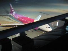 羽田から飛行機に乗って富士山を見下ろそう!…って、おいおい何だこりゃぁ~(・´з`・)