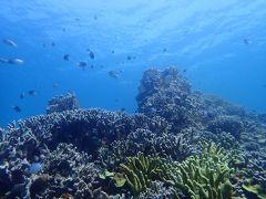 梅雨明けの沖縄へ(13)安くて新鮮でうまい海人食堂でランチしてサンゴの美しいポイントでダイビング