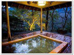「四季の湯座敷」武蔵野別館に宿泊