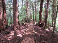 赤沢自然休養林と寝覚の床を巡る旅