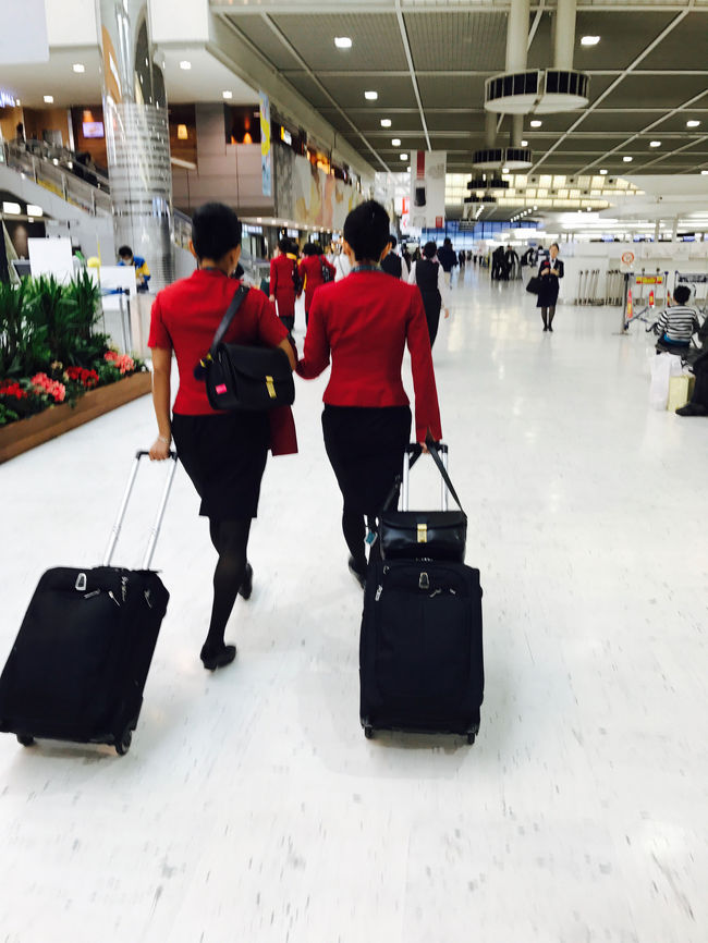 大・大・大好きなシンガポールへ!♪( ´▽`)<br /><br />JAL修行4回目は趣向を変えて、と思いましたが結局安定のシンガポール?!<br /><br />今回もキャセイホリデーの飛行機+ホテルでセット購入。<br />前回と違うのは、JALの伊丹ー羽田往復を別購入し、成田発着にしてマイル加算をよくしたこと、ホテルは超リッチにリッツカールトンミレニアです。<br /><br />2017年2月のハノイ旅から休む間もなく次の計画を入れてしまい、若干準備不足ではありましたが、終わってみればなんとも贅沢で幸せな時間を過ごすことができました。<br /><br />宜しければお付き合いくださいませ。<br />vol.1は出発からシンガポール到着までの移動です。