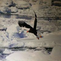 冬の北海道を行くVol.3 オホーツク・紋別
