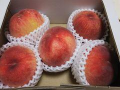 さくらんぼ狩り桃食べ放題バスツアー