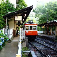 箱根旅 あじさい電車とガラスの森美術館