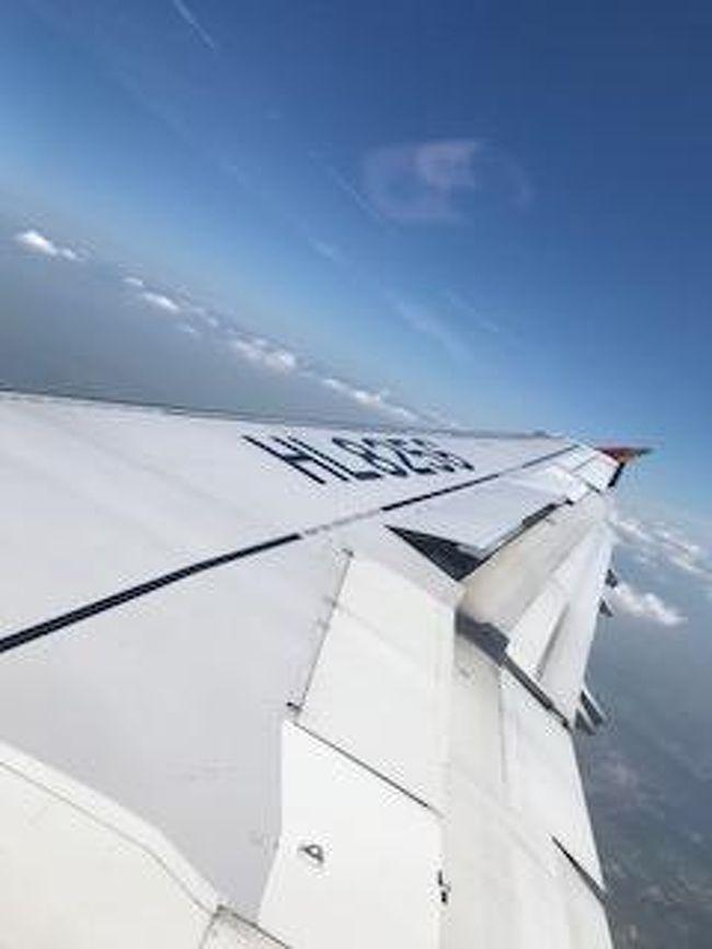 旅行目的は、グルメと焼肉、惣菜が購入したくて久々の韓国旅行となりました。<br />結局なんだか満足に欠けた旅行になってしまったような感じでした…<br /><br />中部国際空港セントレア→仁川国際空港 アシアナ航空<br />2018/06/20~2018/06/22 2泊3日 <br /><br />JTB 旅のアウトレット <br />アシアナ航空指定 明洞地区ホテルスカイパーク1・2・3指定なしで申込<br />結果 ホテルスカイパーク 明洞2 になりました。<br /><br />総額約1人40000円弱でした。<br />