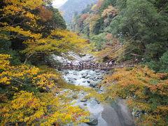 四国周遊 2泊3日のドライブ旅~2日目(徳島・奥道後)