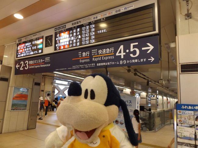 グーちゃん、臨時合宿で箱根湯本温泉へ行く!(河原で昇天!編)
