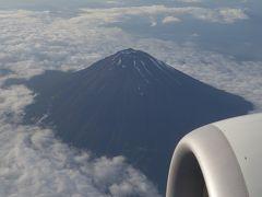 ボーイング737-800に乗りました。成田-中部の便NH337。富士山がよく見えました。