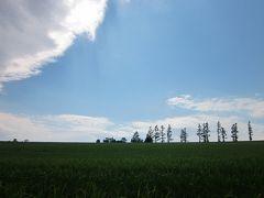 18 新緑の北海道 パッチワーク柄・丘の町美瑛 ぶらぶら歩き暇つぶしの旅ー2