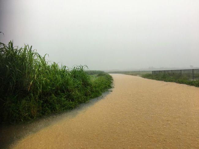 7月4日から2泊3日で宮古島に行って来ました。<br />4日と5日は50年に一度の大豪雨。<br />1時間に120mmの大雨。<br />泣きそうになりましたが、気合いで楽しんで来ました。<br /><br />雨の中でのシュノーケリング<br />市場巡り、島巡り、そこそこ楽しめました。<br /><br />ホテルはシギラリゾートの中のブリーズベイマリーナに宿泊。<br /><br />写真は川じゃないです。<br />道です。<br />ヒヤヒヤのドライブもいい思い出です。