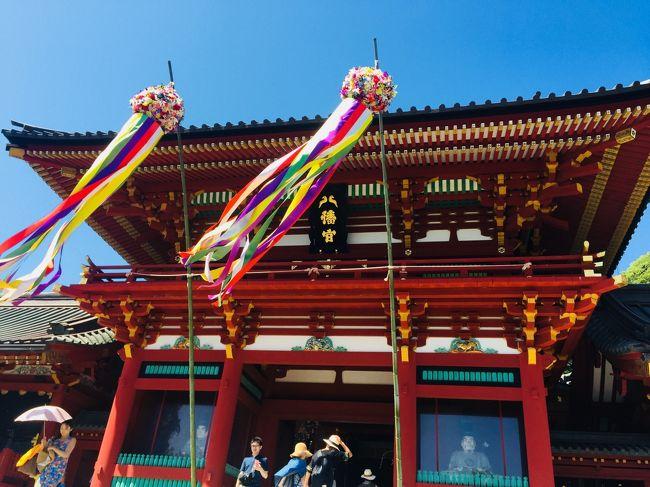 紫陽花の時期に北鎌倉から源氏山を通り鶴岡八幡宮を徒歩でめぐりました。
