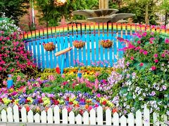 初夏の札幌 花めぐり *フラワーカーペットと花フェスタ*