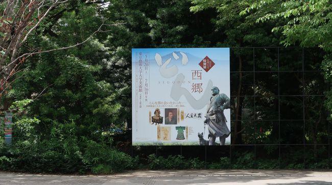 東京藝術大学大学美術館で西郷どんの展示をやっているというので再び上野の旅へ。<br />今回は上の子だけを連れて二人で行ってきました。<br />それにしても暑かった!