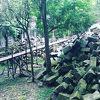 ベンメリア遺跡の観光ツアーのおすすめ時間を紹介させて頂きたいです。
