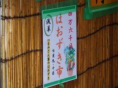 とうきょう 淺草・ほおずき市 2018夏