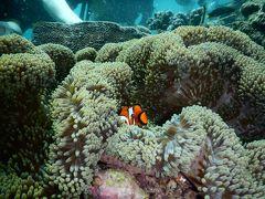 2年ぶりの海外旅行は初バリ島で息抜き