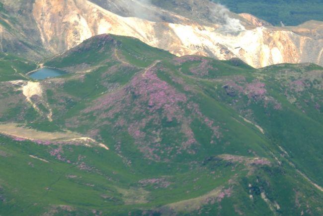 今回の熊本出張,午前中休みが取れたので1000発NH643便でいった.羽田まで平日朝なので大渋滞 2時間15分かかる<br />ラウンジそこそこに搭乗 今日はこの季節にしては空気が澄んでいたので,たくさんの写真を機内からとることができた.一番は九重連山のみやまきりしま.最初は山頂付近の一部分が桃色なので何かと思ったが,実はミヤマキリシマが満開 降下時とはいえ,旅客機の中から山の花が見えたのに,大感激した!1200熊本着 タクシーでホテル日航熊本へ 1245到着<br />チェックインさせてくれたので部屋に荷物を置き,昼食をラーメン赤組へ よくばりラーメン なんと680円と激安!マー油が効いた細麺 豚骨もあのくどさがなくおいしい チャーシューもおいしかった.ここはとても安い店だ.<br />ホテル日航熊本は,もう何度泊まったことか.さすが五つ星の風格 部屋は広く,ソファがあり,トイレと風呂が別々だ.アメニティもそろっている.特筆は朝食!たくさんの熊本の名産珍味を味わうことができた.もちろんオムレツもある!いいねえ!