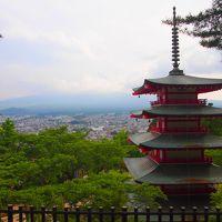山梨でさくらんぼ狩りと富士吉田の富士山と五重塔が見えるスポットへ