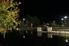 美しき南イタリア旅行♪ Vol.15(第1日)☆Paestum:ミシュラン1星リストランテ「ラ・トラぺ」煌めく夜景の庭園♪