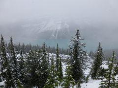 憧れの夏のカナダ旅行その② 7月なのにまるで冬!のカナディアンロッキー