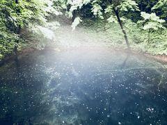 念願の青池 もやがかかり神秘的   青森⑥
