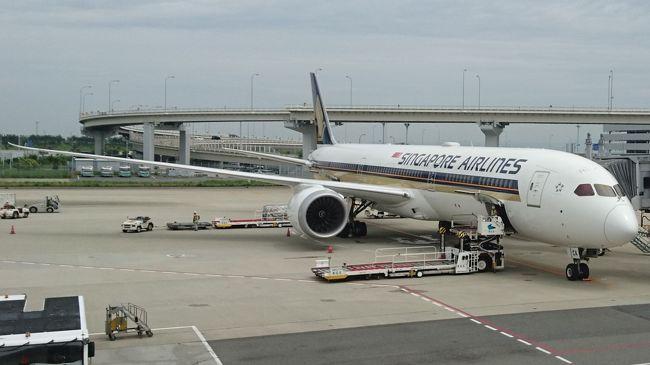 主目的<br />・SINGAPORE AIRLINESの最新鋭機「787-10」に搭乗<br /> [往路] IZO→ITM~空港間移動~「KIX→SIN(787-10)」<br /> [復路] 「SIN→KIX(787-10)」~空港間移動~ITM→IZO<br />  初期の頃より機内騒音も随分と静かになりました。<br />  787シリーズの進化を実感した搭乗でした。<br />・チャンギT3のSilver Krisファーストクラスラウンジ<br /> T3のFラウンジは素晴らしかったです。<br /><br />シンガポールでおこなったこと<br />・「Tourist Pass」<br />  2018年5月29日、T2 TICKET OFFICEでの購入<br />  Pass販売駅のTICKET OFFICE一覧と営業時刻一覧Get<br />・「MUSTAFA CENTRE(ムスタファセンター)」でお買い物<br />・「DEPARTING FROM CHANGI CITY POINT」のFREE RIDESバス乗車<br />・「LRT」Bukit Panjang線乗車<br />・「MRT」各路線乗車<br /><br />宿泊HOTEL<br />・Hilton大阪<br />・Hilton Garden Inn Singapore Serangoon<br /><br />観光地巡りも殆ど無く、大したことはやっていません。<br />そんな旅行であっても、こうして振り返ってみれば<br />何となく何かを実行していたように見えたりします。<br />しかし、Upするのに随分と時間を要しました。。。