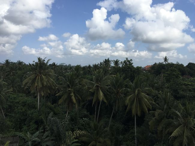バリ島Ubud & Nusa Dua 一人旅 1/2 -エレメント バイ ウェスティン ウブド ホテル-