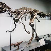 新潟ふるさと村~福井県立恐竜博物館へ!