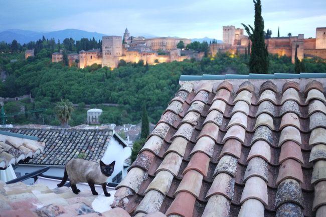 南スペイン、アンダルシア地方のグラナダといえば、異国情緒溢れるアルハンブラ宮殿が有名。同時に忘れてはいけないのが、その前に鮮やかに広がっている白壁の街がアルバイシン地区。<br /><br />今回、ここのアパートメントに5日間滞在して、イスラム教とキリスト教の文化の融合が醸し出す、世界でも独特の街を味わいました。<br /><br />ここは、イスラム教徒によって築かれたグラナダ最古の街並みが残る歴史的な場所。もともと急こう配の丘の上に砦として造られ、白壁の街の道並はすべて坂道で、かつ、迷路のように入り組んでいる。<br /><br />11世紀に、キリスト教徒に攻め込まれた時、モーロ人は、最後まで抵抗して、白壁は流血により真っ赤に染まったという。<br /><br />近年、少し前までは、治安が悪く、なかなか行きづらかった地域であったが、現在は治安も回復して、昔血塗られた壁も真っ白な美しい世界遺産となっている。<br /><br />ここからの、アルハンブラ宮殿の眺めは絶景(特に夜景)で、世界中から多くの旅人の心を感動させている。