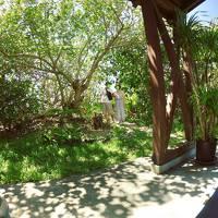 九州より涼しい八重山諸島で癒し夏旅�〜マンタシュノーケルと宮良農園、そして旬家ばんちゃんのランチ〜