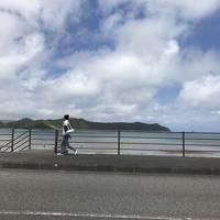 離島記:1度じゃ回りきれない奄美大島