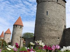 �中世の街歩きタリン 北欧・バルトの旅 コペンハーゲン・ヘルシンキ・リガ・エストニアの旅