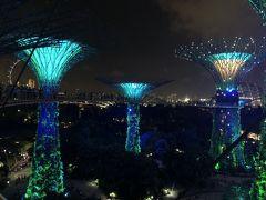今度はスカイウォークから!音と光のファンタジー、ガーデンラプソディ ジャカルタ・シンガポール2018の旅5-4