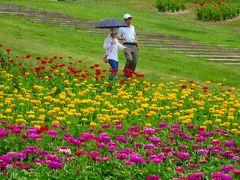 桃の買い出し(21) 富士見高原花の里でカートに乗って見学後昼食 その4。