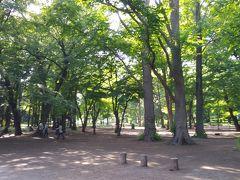「住んでみたい」というテーマの東京旅行 part1
