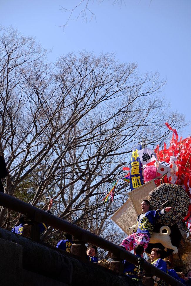 出張先で近江八幡にクレイジーな祭りがあると聞き、帰京を延長して、見にいくことにしました。自分が知っている祭りの派手さとは違う派手さを見ることができて、日本の文化の面白さを発見することができました。また、祭りの合間の時間には彦根城なども見学しました。