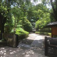 2018年7月 都立9庭園を廻る� 殿ヶ谷戸庭園