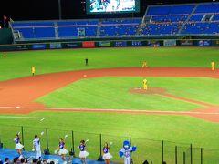 地歩に無い台湾旅行003:台湾のプロ野球観戦・桃園編-01