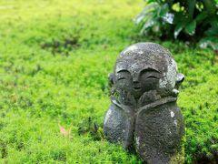 青もみじを求めて京都ひとり旅 (1)洛北・洛東のモミジの名所で緑に包まれた1日