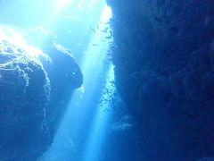 真夏の石垣島(8)竹富島、黒島ダイビング・太陽のスポットライトを浴びる洞窟やサメや小さな魚たちも