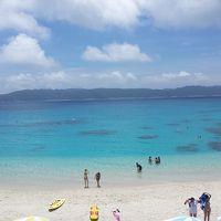 待ち焦がれた阿嘉島へ〜3日目みつしまで座間味島初上陸