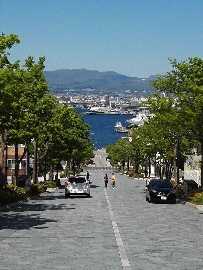初めての函館へ…②五稜郭&八幡坂界隈でチャーミーグリーン♪by オキャマ二人旅♪