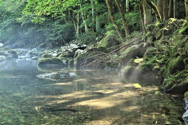 暑いは禁句にしたいけど、暑いと思わず言ってしまう今日このこの頃、もう前代未聞の暑さですが、皆様お元気ですか。<br />この暑さをしばしでも忘れたくて、岐阜県山県市を流れる円原川に行ってきました。<br /><br />円原の伏流水とは、川などを流れる水が一旦地下に潜ることをいいます。<br />円原の伏流水の魅力は、岩間からこんこんと湧き出る水の美しさ。<br />白い岩と緑の苔が、「ぎふ・水と緑の環境百選」にも選ばれた水の青さをいっそう引き立てます。<br />また、夏の朝には、気象条件によって川霧に覆われた幻想的な景色を見ることができます・・・・山県市HPより<br /><br />いつもの写真仲間で夜明け前の4時に出発。<br />徐々に明けていく空の美しさに感動しながら、円原川に到着。<br />空が曇っていると光芒は見れないそうで、ちょっと心配。<br />さて、円原川の様子はいかがだったでしょうか?