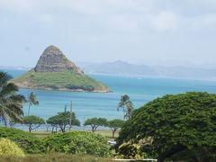 夏休み'18は初ハワイへ!【子連れのクアロアランチ編】