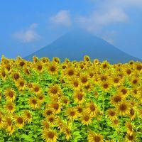 真夏の南九州ぐるり一周の旅